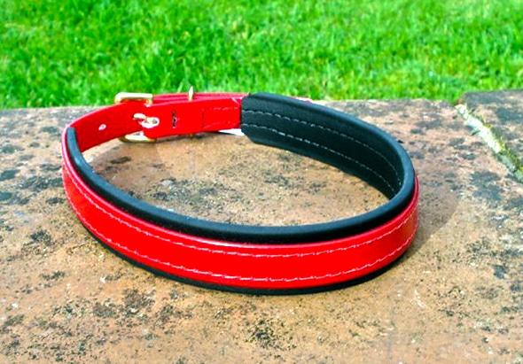 Medium Translucent Red Dog Collar With BETA® Black Underlay-0