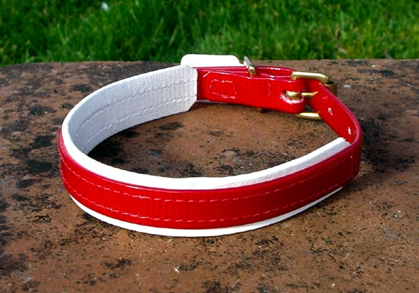 Small Translucent Red Dog Collar With BETA® White Underlay-0