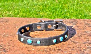 Extra Small BETA® Black Dog Collar With Turquoise Rivets-0