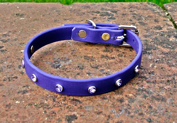 Extra Small BETA® Purple Dog Collar With Rhinestones-0