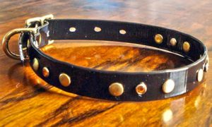 Extra Small BETA® Black Dog Collar With Amber Rhinestones and Rivets-0