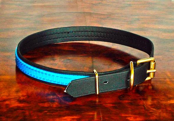 Medium BETA® Black Dog Collar with Translucent Mid Blue Overlay-0