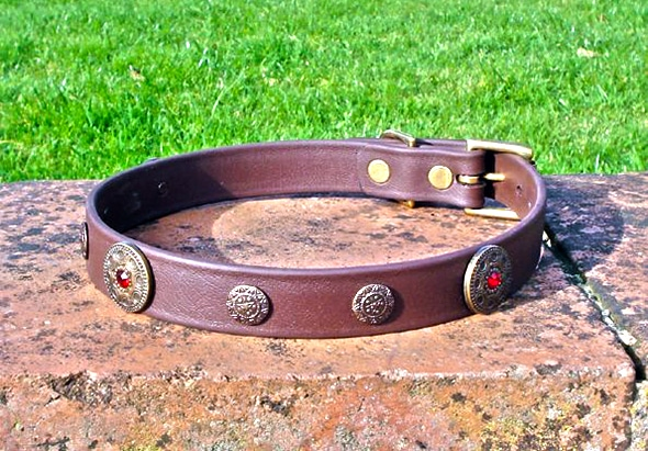 Large BETA® Brown Dog Collar With Freeya and Nordstar Conchos-0