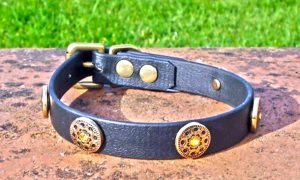 Small BETA® Black Dog Collar With Gold Plated Freya Conchos-0