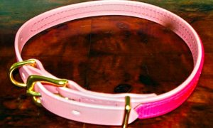 Small BETA® Pale Pink Dog Collar With Translucent Fushia Pink Overlay-0
