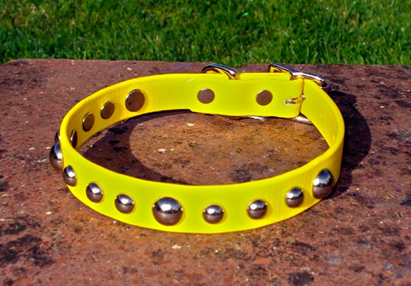 Small BETA® Yellow Dog Collar With Domed Rivets-0