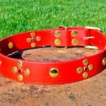 Large BETA® Red Dog Collar With Rivets and Red Rhinestones-0