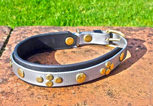 Medium Silver Dog Collar With BETA® Black Underlay and Rivets-0