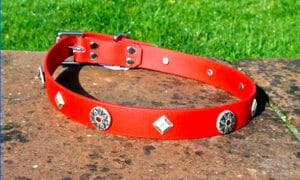 Large BETA® Red Dog Collar With Gwydiond Conchos and Keystones-0