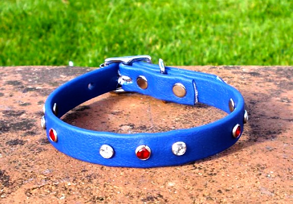 Extra Small BETA® Blue Dog Collar With Red and White Rhinestones-0