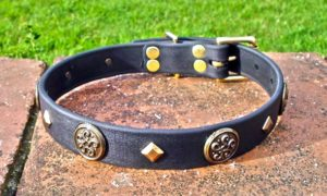Large BETA® Black Dog Collar With Celtic Conchos and Keystone Rivets-0