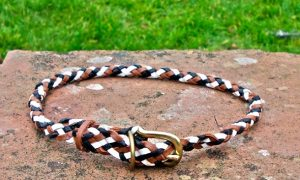 Plaited Leather House Dog Collar In Black, Tan, And White-0