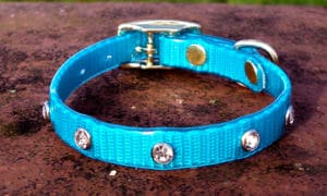 Extra Small Translucent Turquoise Dog Collar With White Rhinestones-0