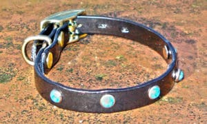 Extra Small BETA® Black Dog Collar With Small Turquoise Rivets-0