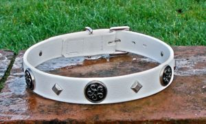 Large BETA® White Dog Collar With Celtic Conchos-0