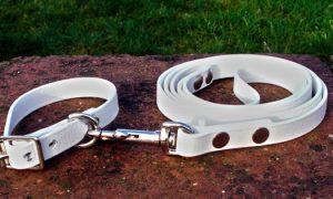 Small BETA® White Dog Collar-0