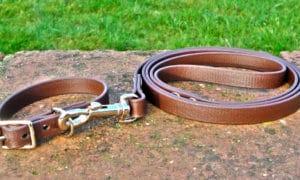 Small BETA® Brown Dog Collar-0