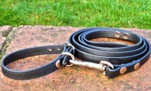 Small BETA® Black Dog Collar-0