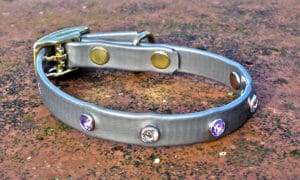 Extra Small Translucent Silver Dog Collar With Purple and White Rhinestones-0