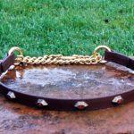 Half Check Dog Collar-1543