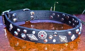 Large BETA® Black Dog Collar With Mixed Conchos-0