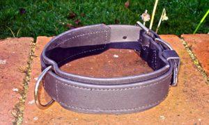 Extra Wide BETA® Black Dog Collar with Underlay-0