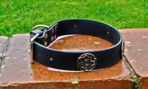 Extra Wide BETA® Black Dog Collar With Round Horse Conchos-0