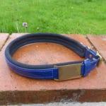 Agility Dog Collar-1349