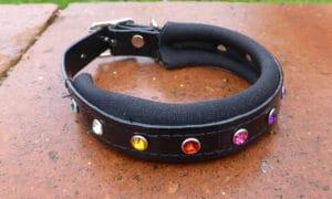 Padded Bling Agility Dog Collar-0