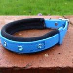 Padded Bling Agility Dog Collar-1333