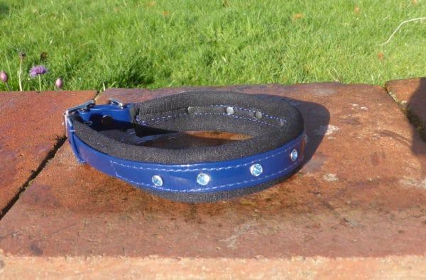 Padded Bling Agility Dog Collar-1335