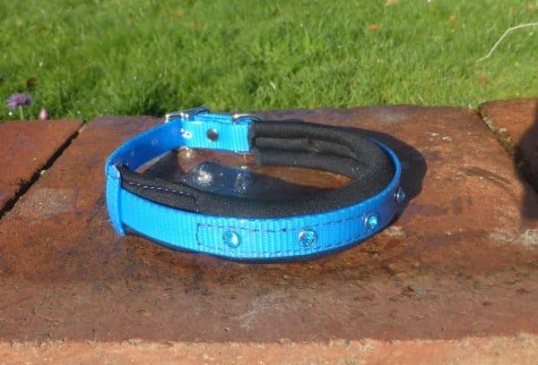 Padded Bling Agility Dog Collar-1336