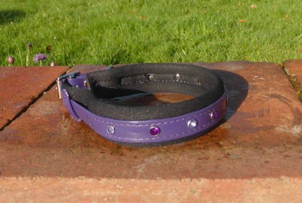 Padded Bling Agility Dog Collar-1338