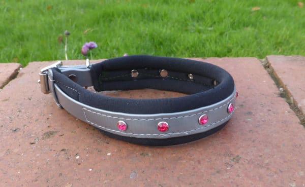 Padded Bling Agility Dog Collar-1339