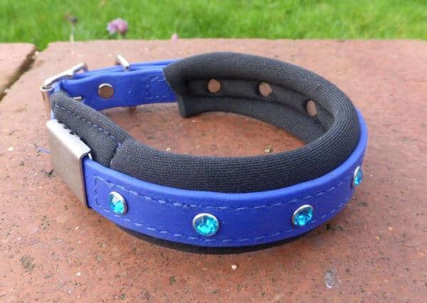 Padded Bling Agility Dog Collar-1340