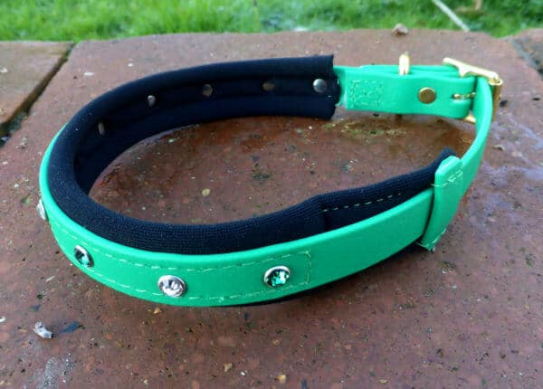 Padded Bling Agility Dog Collar-1342