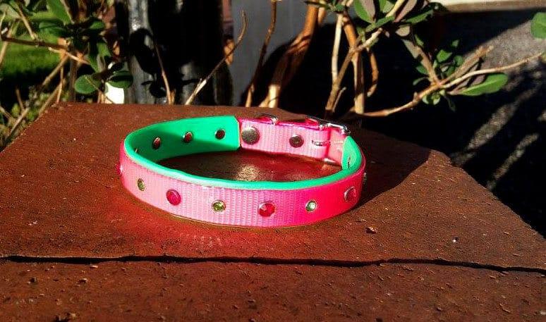 Duo Bling Dog Collar-0