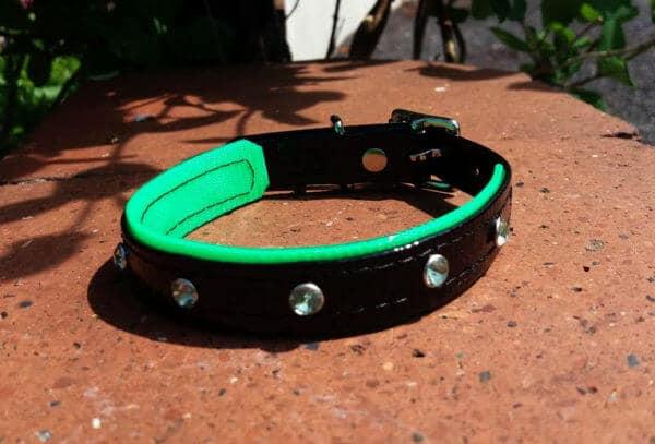 Duo Bling Dog Collar-1473