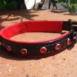 Duo Bling Dog Collar-1475