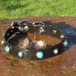 Bling Dog Collar-1518