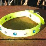 Bling Dog Collar-1521