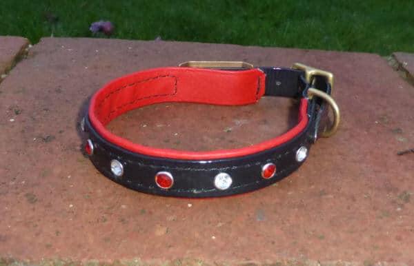 Duo Bling Dog Collar-1476