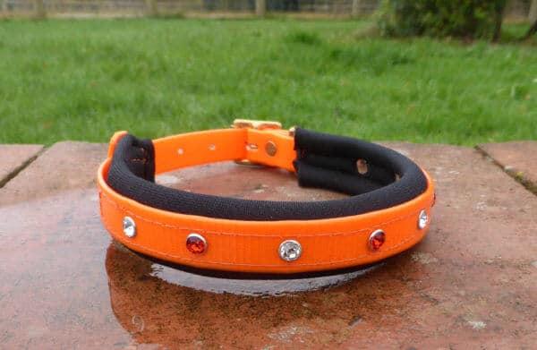 Padded Bling Dog Collar-1398