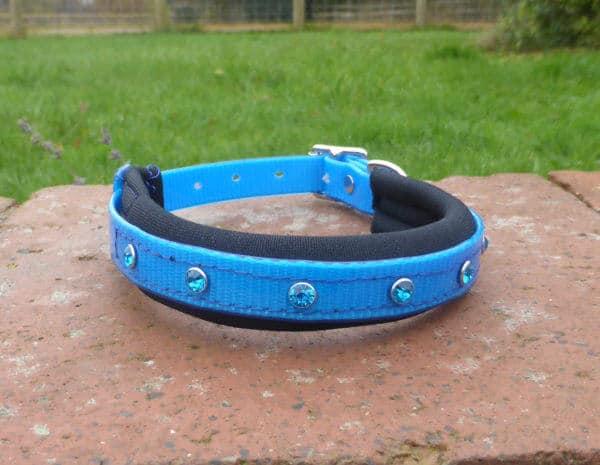 Padded Bling Dog Collar-1399